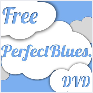 Perfect Blues DVD