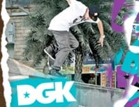 7.9 DGK Skateboard Bearings