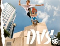 Tech DVS SKATE SHOES
