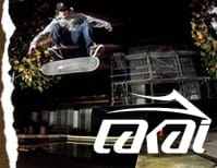 Low Profile Lakai Mens Skate Shoes