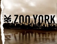White Zoo York SKATE CLOTHING