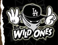 The Wild Ones Skate T-Shirts