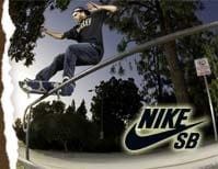 Low Profile Nike SB SKATE SHOES