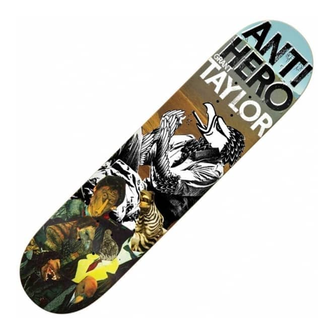 Antihero Skateboards Taylor Wild Unknown Skateboard Deck 8.25