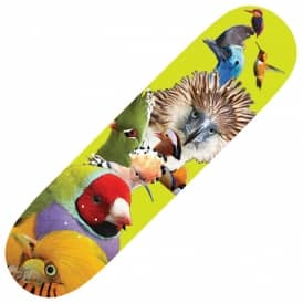 Birds Skateboard Deck 8.5