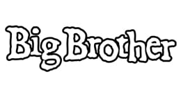 Big Brother Magazine Shit The Big Brother Book - Ginko Press