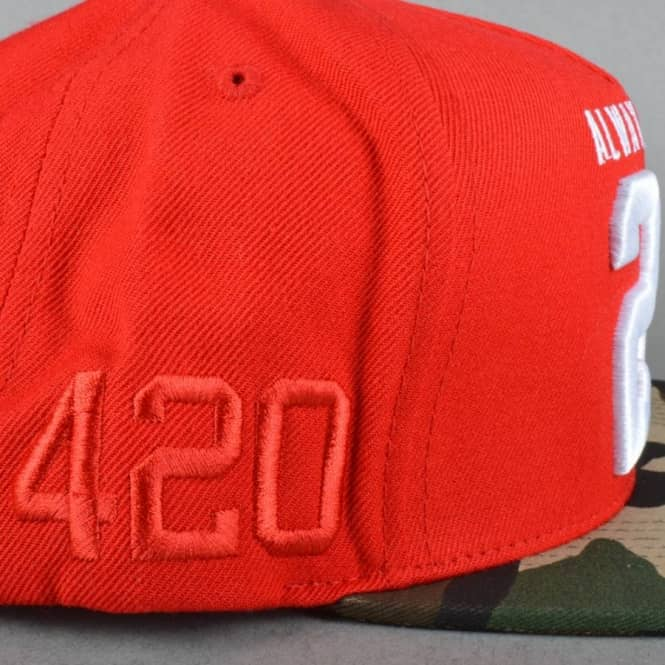 4f75b4d9853 DGK Always 420 Snapback Cap - Red Camo - Caps from Native Skate Store UK