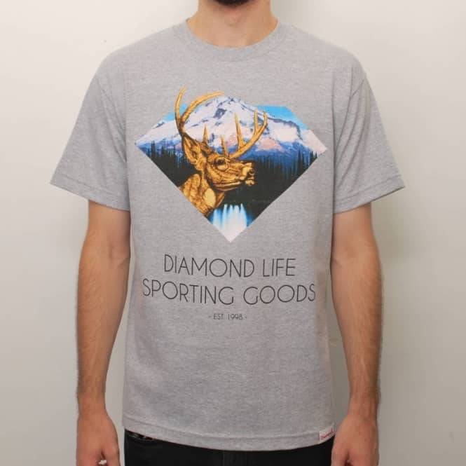 Diamond Supply Co. Diamond Sporting Goods Skate T-Shirt - Heather Grey