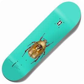 Girl Skateboards | Skateboard Decks, Wheels & Clothing