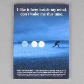 Polar Skateboards I Like It Here Inside My Mind, Don't Wake Me This Time Skateboard DVD