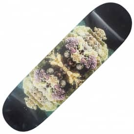 Insect Skateboard Deck 8.5
